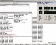 天堂2单机版四章官方端VM服务端一键版+手工天堂2汉化服务端,可单机可外网