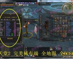 天堂2稀有端 天堂2单机版一键端+GM工具网游单机游戏一键端 GM模式 三龙武器各种翅膀